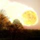 """""""Un asteroide como el que acabó con los dinosaurios chocará con la Tierra"""""""