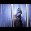 Lil Wayne – CoCo Freestyle #SFTW2 Se burlo el molleto Guetto music
