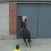 VIDEO Un toro se cuela en una casa y desata el pánico dentro ( INCREIBLE )