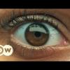 VIDEO Poder, dinero, y felicidad – CODICIA   DW Documental APRENDE UMPOCO MAS