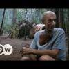 Canción de la selva | DW Documental INTERASANTE WOW