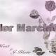 Gran Estreno – Necio Musik Ft. Jblazter – Flor Marchitada.mp3 audio oficial juye dale a play!!