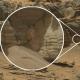 La NASA publica la foto de un 'gigantesco cangrejo estraterrestre espacial' en Marte