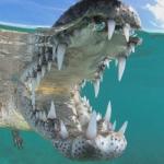VIDEO: Arriesga la vida para fotografiar un cocodrilo muy de cerca como autorregalo de cumpleaños